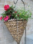 One of the front porchbaskets