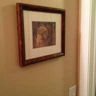 Back hall by Mudroom