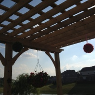 Kissing balls hung from the pergola
