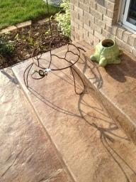 Garden Turtles